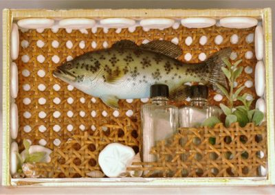 Fishing - $49.00 in cigar box
